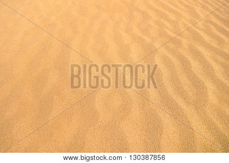 Desert sand dunes as waves natural background molded by the wind - Sandy orange beach endless view