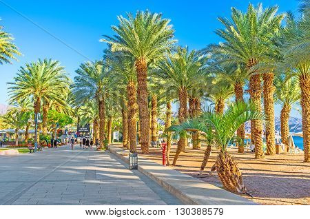 EILAT ISRAEL - FEBRUARY 23 2016: The luxury Israeli resort boasts the best sand beaches lush tropic gardens warm sea and magnificent views on February 23 in Eilat.