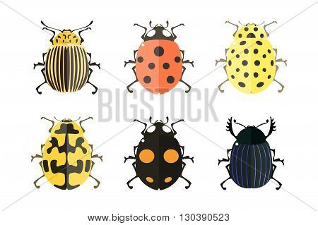 Insect vector collection. Insect icons. Vector illustration on a white background.