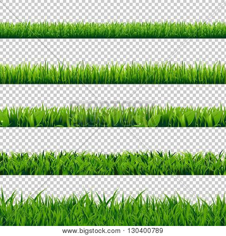 Grass Border Big Set, Isolated on Transparent Background, Vector Illustration