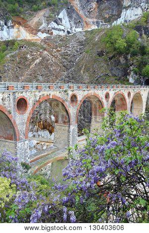 Carrara Bridge