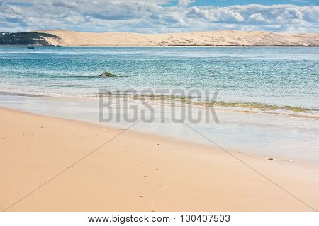 View Of The Arcachon Bay, Aquitaine, France