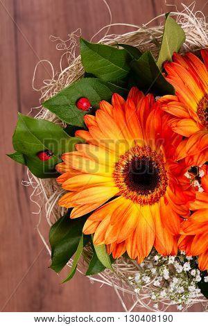 Bouquet Of Orange Gerberas And Few Ladybugs