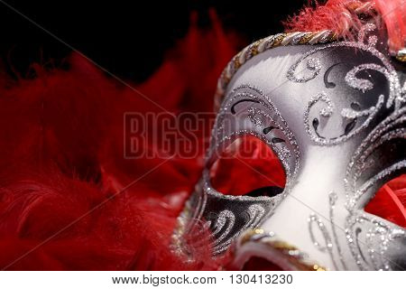 mask carnival in the midst of red feathers