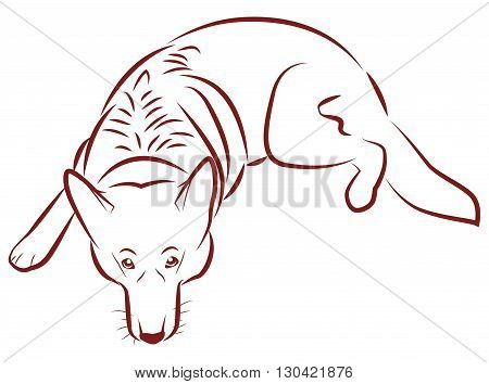 The contours of the German Shepherd. Dog lies and devotedly looks. Vector illustration