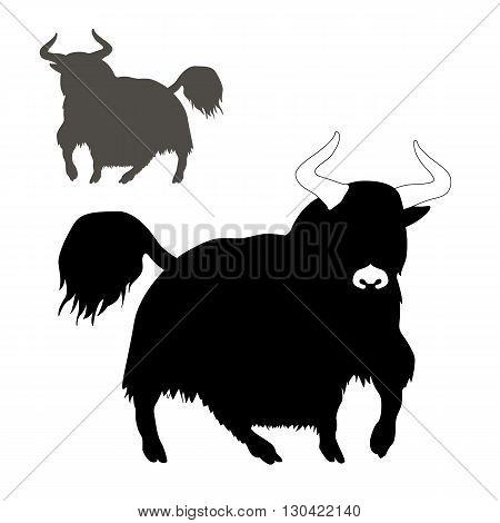mountain yak Mountain bull vector illustration black silhouette