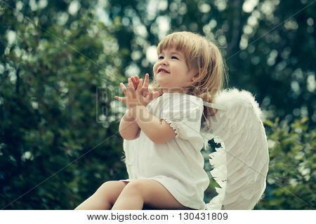 Little Angel Claps His Hands