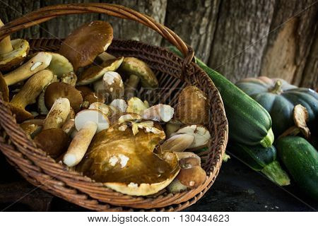 Still life with autumn vegetables like a basket with fresh picked porcini mushrooms zucchini and a green pumpkin with a wooden background. These are popular food ingredients in the Italian kitchen in fall season.