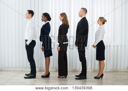 Group Of Professional Businesspeople Standing In A Line At Workplace