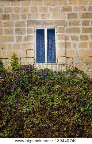 Window On The Maltese  House.