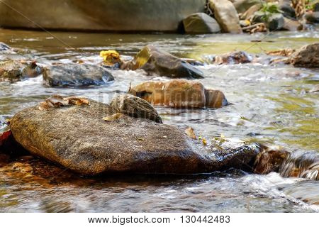 Mountain stream in Khao Sok National Park Surat Thani Province Thailand. Selective focus on a large rock in the foreground.