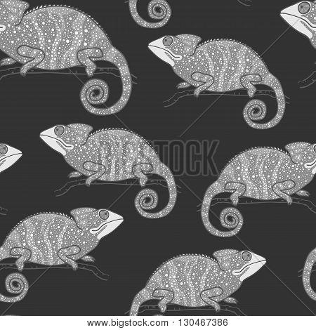 Seamless wallpaper with chameleon on dark background. Monochrome lizard. Seamless pattern with hand drawn chameleon