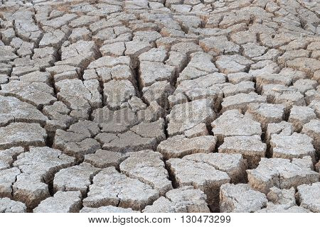 earth cracked abstract background drought in summer