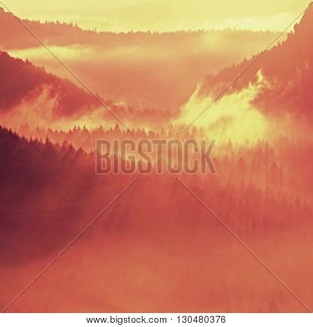 Colorful Autumn Daybreak. Misty Awakening In A Beautiful Hills. Peaks Of Hills Are Sticking Out From