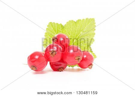 red currant isolated on white