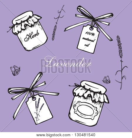 Vintage hand drawn lavender vector illustration isolated on violet background. Engraving illustration. Collection of vintage bottles lavender flowers and label in vintage style