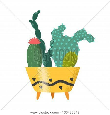 Set of cactus vector illustration. Plants in cute retro pots. Cacti on white background. Isolated vector. Illustration for catalogs on gardening home plant. Cartoon of green dwarf cactus.