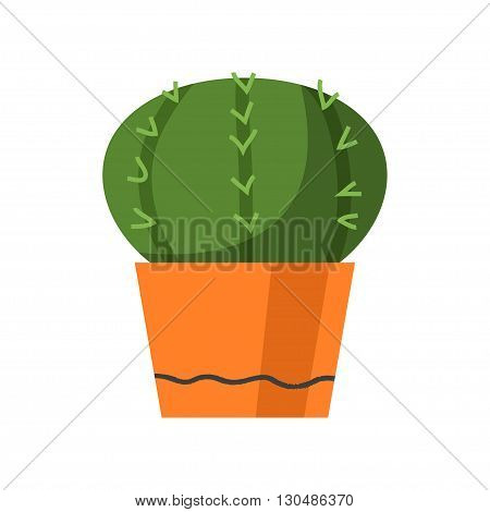 Cactus vector illustration. Plants in cute retro pots. Art of house plants from cactus. Isolated vector. Illustration for catalogs on gardening home plant. Cartoon of green dwarf cactus.