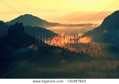 Marvelous Daybreak. Autumn Sunset View Over Forest To Fall Colorful Valley Full Of Dense Mist Colred