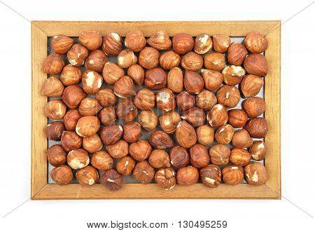 Hazelnuts In Wooden Frame