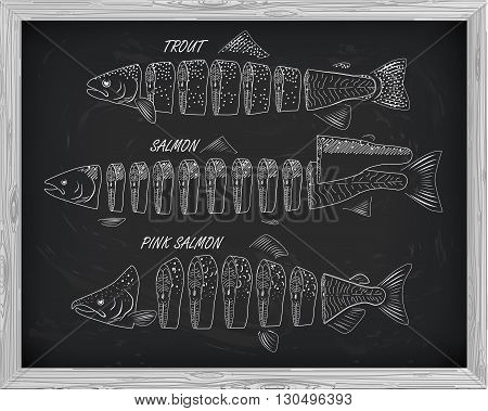 Beautiful Pattern Of Salmon, Trout And Pink Salmon. Cutting Scheme With A Drawing Of White
