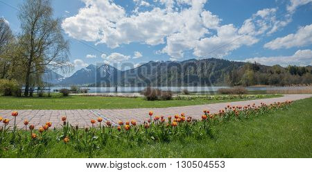 Lakeside Promenade, Spa Gardens Schliersee And View To The Alps