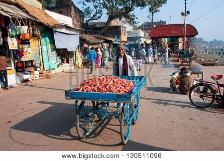 CHITRAKOOT, INDIA - DEC 29, 2012: Trader of the carrots walking down the sunny street on December 29, 2012 in Chitrakoot India. Population of Chitrakoot is 22294. By the legend god Rama lived here 11 years