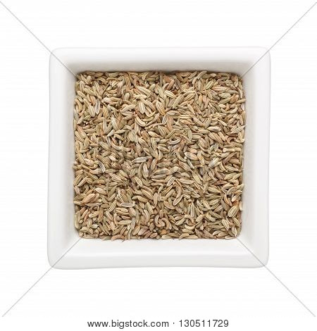 Fennel seeds in a square bowl isolated on white background