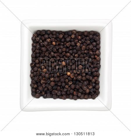 Black peppercorns in a square bowl isolated on white background