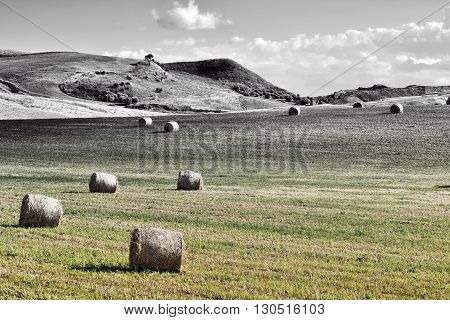 Landscape of Sicily with Many Hay Bales Retro Image Filtered Style