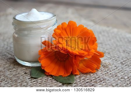 Face cream in a glass jar with a flower calendula on sackcloth.Cosmetics.