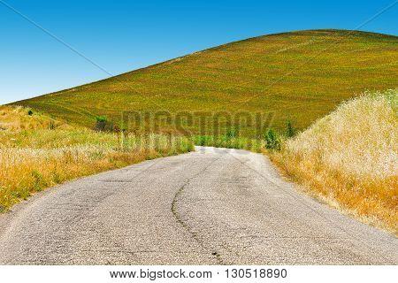 Winding Asphalt Road between Fields of Sicily