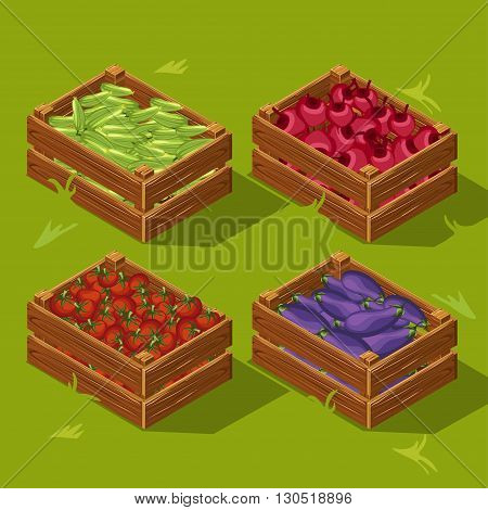 Wooden box with vegetables. Cucumbers tomatoes eggplants and beets