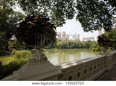 Central park is a big green area in Manhattan New york city