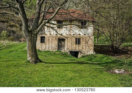 Old abandoned water mill with walnut tree