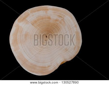 Isolated dried cut alder on a black background