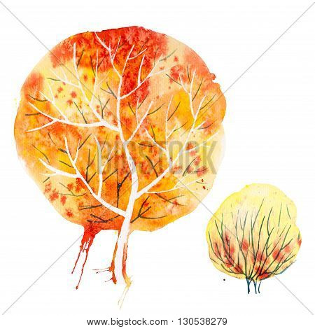 Big hand drawn watercolor orange yellow autumn tree and shrub, isolated on the white background