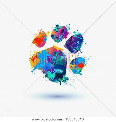 Animal Footprint. Watercolor Splash Paint Icon