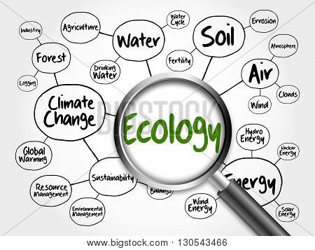 Ecology mind map flowchart concept with magnifying glass for presentations and reports