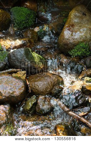 A stream flowing over moss covered rocks.