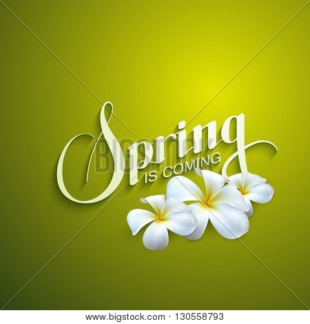 vector illustration of handwritten Spring season retro label with frangipani flowers. spring is coming