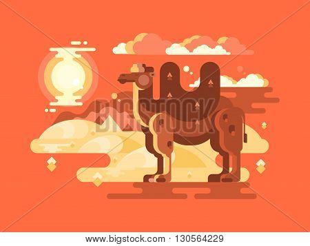 Camel in desert flat. Animal travel on nature, wild mammal vector illustration