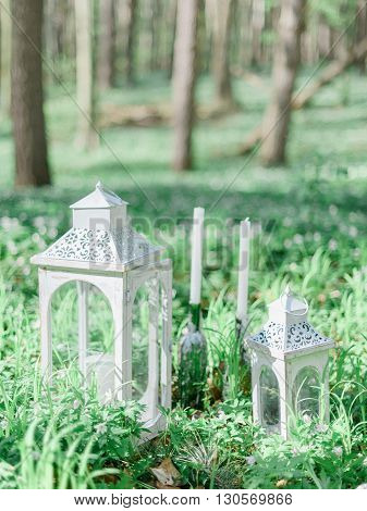 Wedding decoration in rustic style in the forest. White lanterns on the green grass.