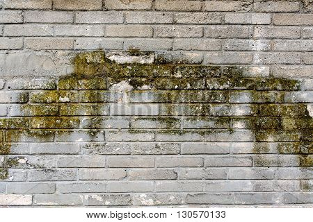 weathered grey brick wall with lichen for background or texture