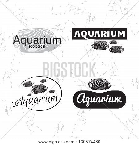 Vector black and white logo set with Emperor angelfish. The fish as main element of logotypes on white background