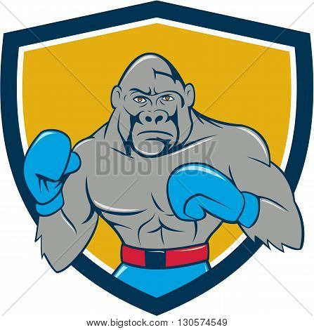 Illustration of a gorilla boxer in boxing stance viewed from front set inside shield crest done in cartoon style.