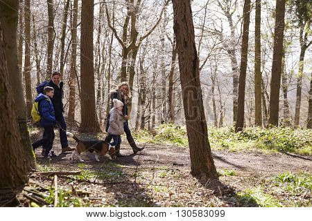 Side view of family walking with pet dog in a wood