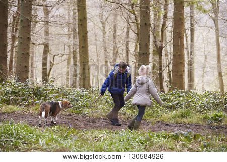 Side view of brother and sister walking pet dog in a wood