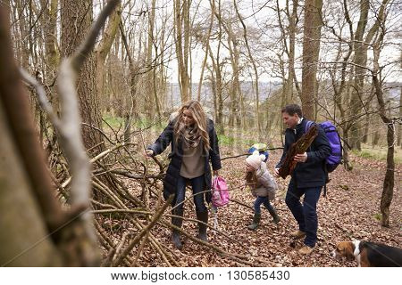 Family with pet dog collecting fallen wood in a wood