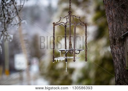 metal icy lantern on the tree in winter